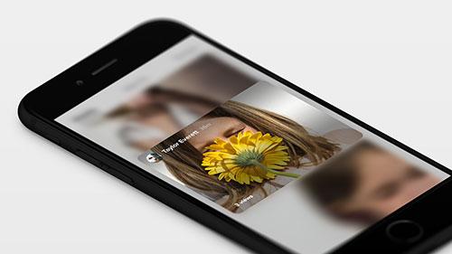flickr-500