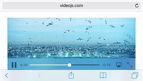 Inline Video Ios 10