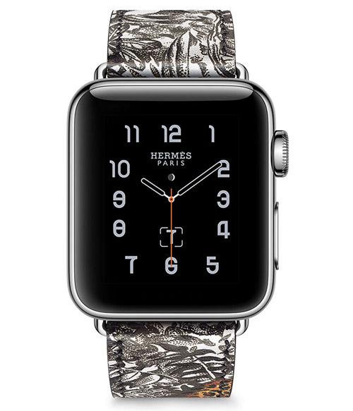 Apple Watch Hermes Robert Dallet