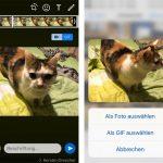 Whatsapp Gif Aus Videos Und Live Photos