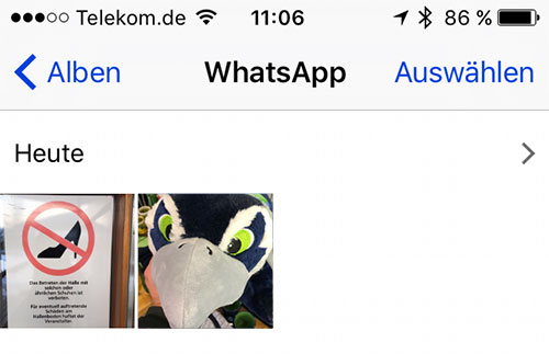 Whatsapp Album Iphone Fotos