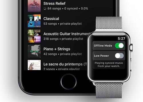 Snowy Spotify App Apple Watch