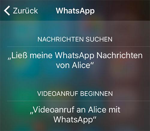 Whatsapp 500