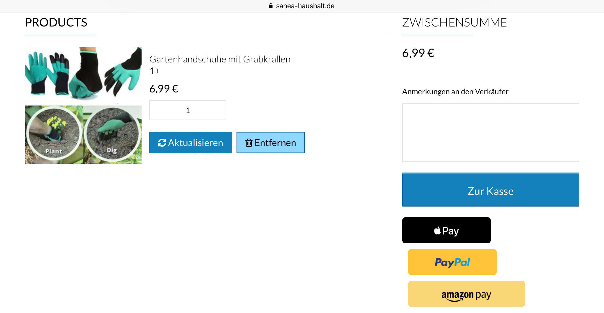 Apple Pay Webseite