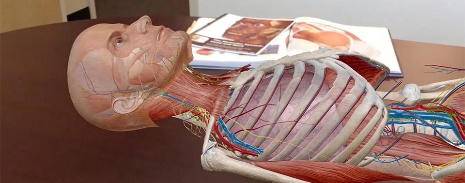 Atlas der Humananatomie: Augmented-Reality-Einblicke in den ...