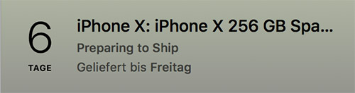 Iphone X Lieferung