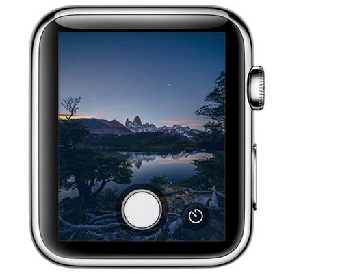 Halide Apple Watch App