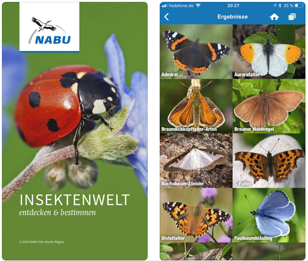 Insektenwelt Screen