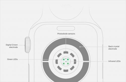 Watch Series4 Sensoren Rueckseite