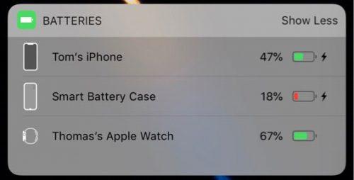 Battery Case 1000