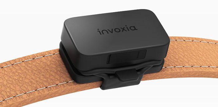 Invoxia Pet Tracker Halsband