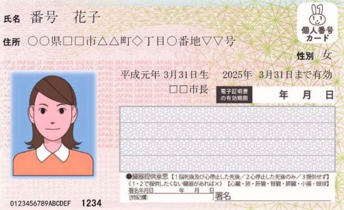 Japan Pass