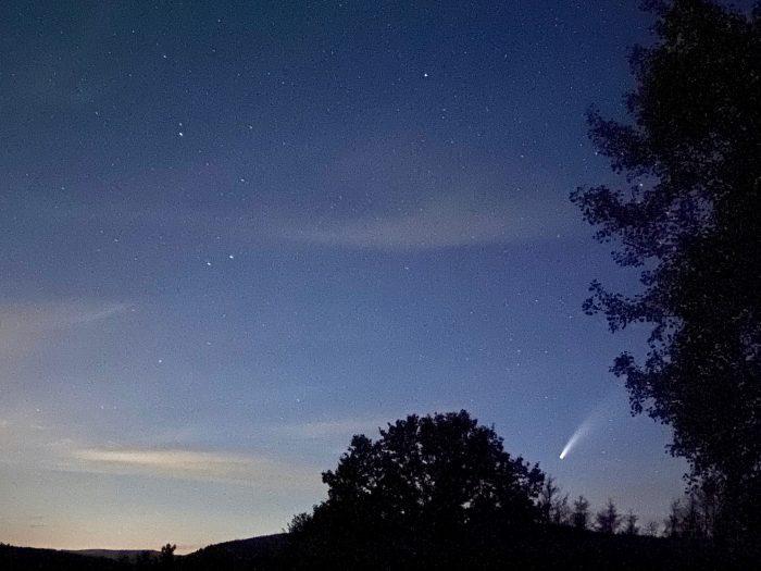Komet Baumkronen 2