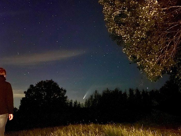 Komet Baumkronen